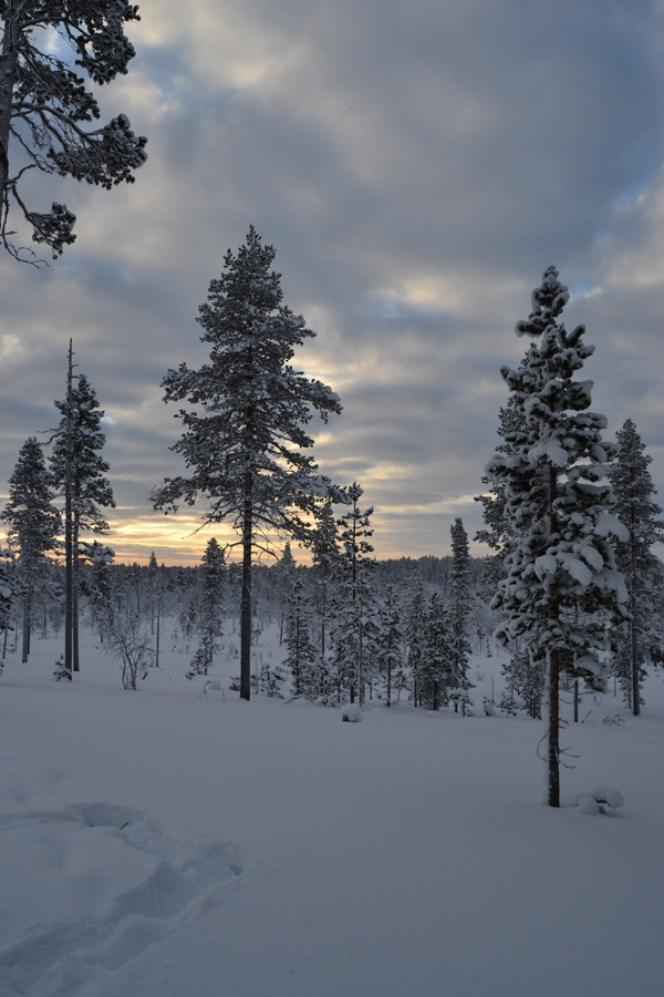 Lapland - The White Land...