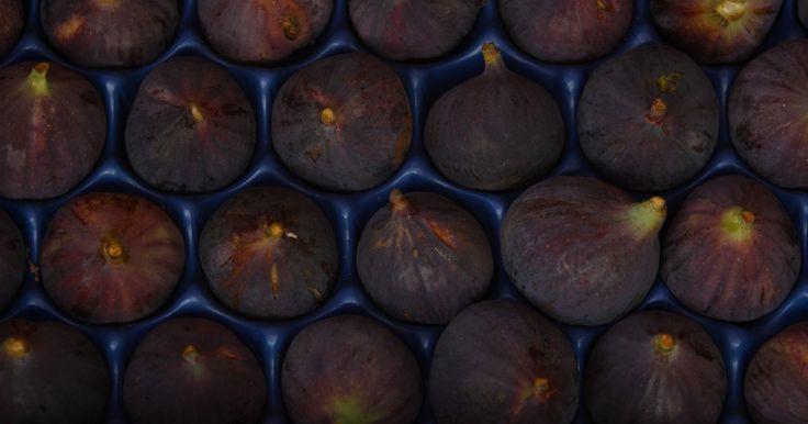¿Qué frutas son consideradas afrodisíacas?. Los afrodisíacos te ayudan a intensificar o provocar el deseo sexual. Aunque no hay evidencia científica concluyente que apoye las propiedades afrodisíacas, muchas tradiciones culturales creen que ciertas comidas, como las frutas, pueden aumentar y estimular tu apetito sexual. Afortunadamente, las frutas son también beneficiosas para tu salud ...