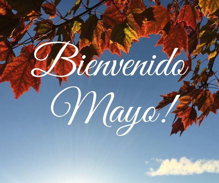 Bienvenido Mayo  !!!  Quiénes nacieron en éste mes ?#Mayo #otoño #Chile     - http://ift.tt/1HQJd81