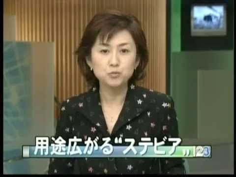ステビアBSニュース stevia BS news (Japanese state-run broadcasting station)