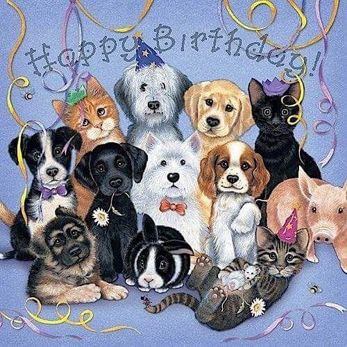 Дружба, открытка с собачкой на день рождения