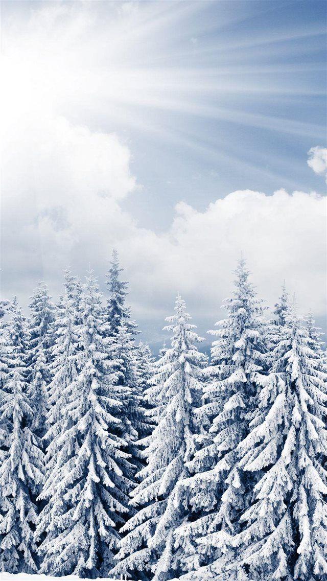 картинки обоев зима для айфона нем