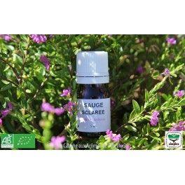 Huile essentielle Sauge sclarée (Salvia sclarea)