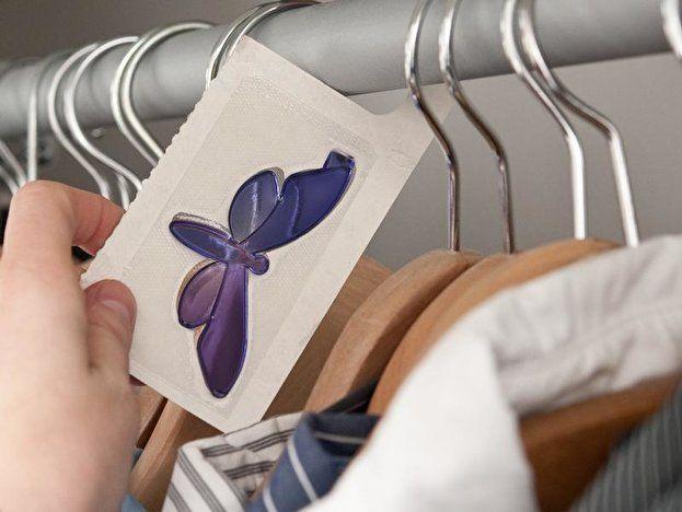 12 Erstklassig Motten Im Kleiderschrank Die Haben Einen Blick In 2020 Motten Im Kleiderschrank Kleiderschrank Motten Im Schrank