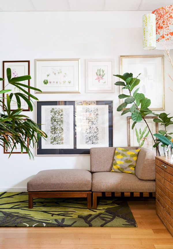 Cosy corner at Jamie Durie HQ!  PATIO by Jamie Durie Freemantle Modular Sofa, Jamie Durie Signature Leaf Canopy Rug by The Rug Collection #TheRugCollection