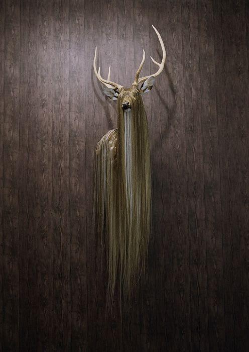 Simen Johan: Animal Deer, Haired Deer, Haired Buck, Deer Creature Beard Hair, Cousin, Hair Long