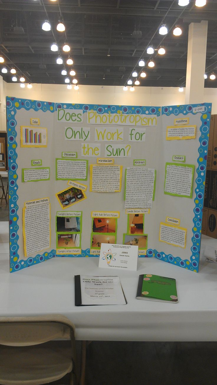 6 grade science projects Science literature sixth grade home 601's blog calendar the project if your project is selected to be the most scientific or most attractive.