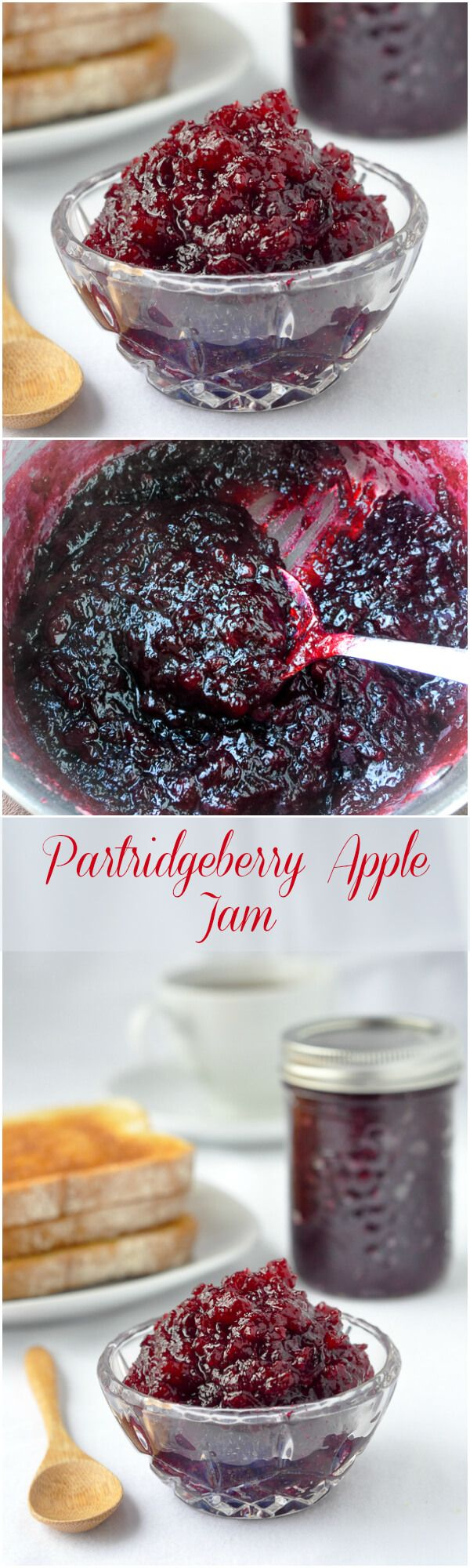 Partridgeberry Apple Jam or Cranberry Apple Jam - a simple, 3 ingredient recipe that takes advantage of the high pectin content in both partridgeberries or cranberries and apples to make a jam that sets beautifully with very little effort at all.