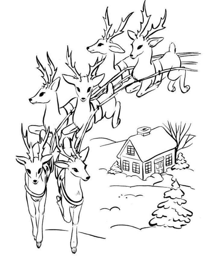 visit santas reindeer coloring pages - photo#40