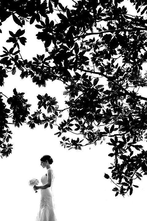 Орнамент из веток кустов. Снимать на фоне переэкспонированного неба. невеста должна быть в тени, как и ветки которыми рисуем орнамент.