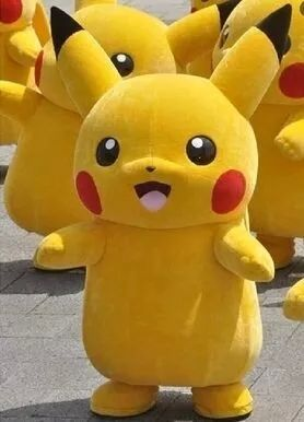 Best Pikachu Costume for sale