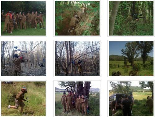 Activities - Gauteng - Hartbeespoort Dam - Broederstroom - Faraway Tree Adventures