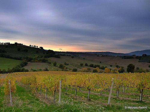 PANORAMA e PAESAGGI  Umbria - Italy