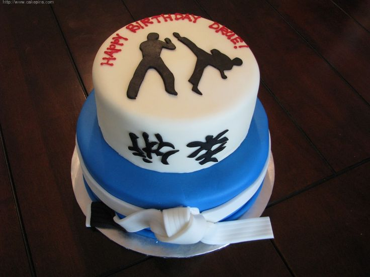 Martial Arts Birthday Cake Ideas And Designs picture 34056