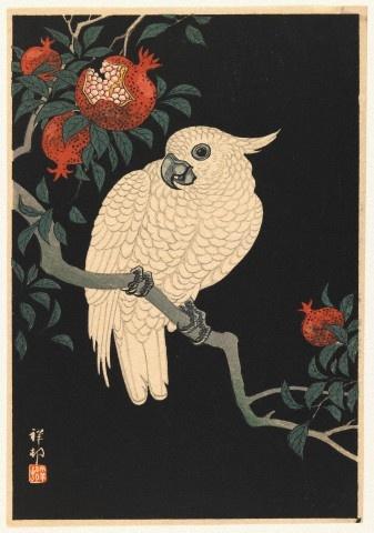 vintage Japanese cockatoo print