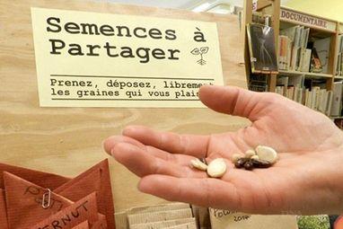 Grâce aux grainothèques, des semences libres dans toute la France