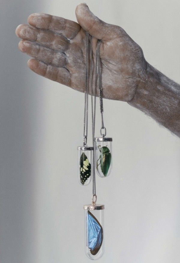 Specimen necklaces featuring butterfly wings + beetles from Bjørg Jewelry, 2011 Lookbook