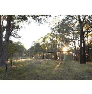 Garadi Hills rural land for sale – Windsor NSW, Singleton, Rural Real Estate • Nature Conservation Trust of NSW