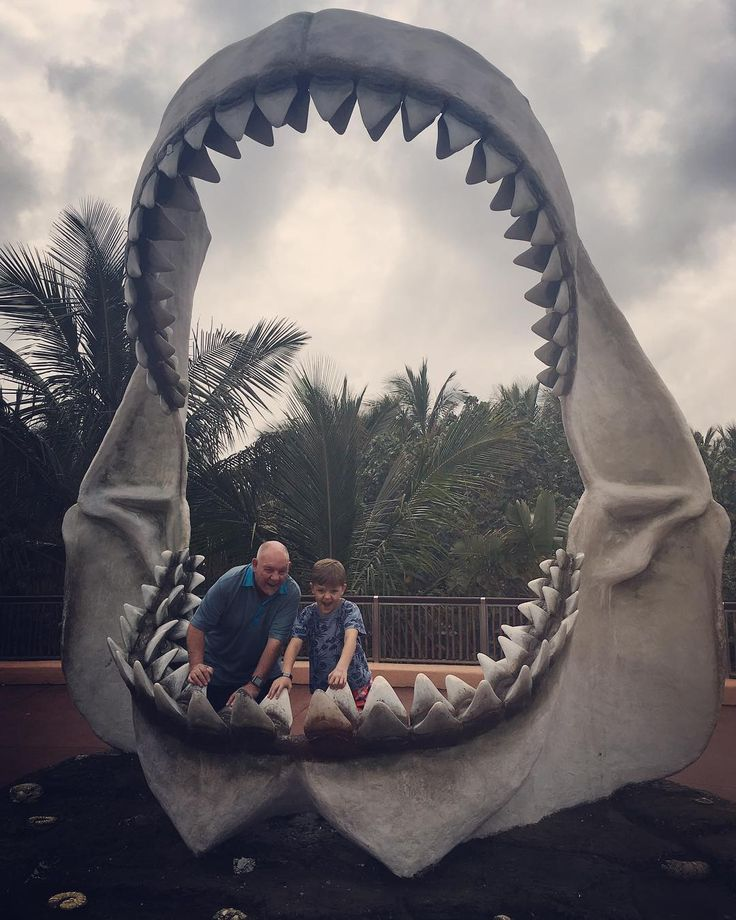 "Paula Gruben (@paulagruben) on Instagram: ""Obligatory tourist pic, inside the replica of a megalodon jaw 🦈"""