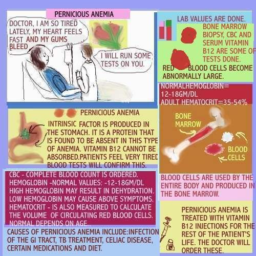 204 best health ~ pernicious anemia my life of hell : images on, Skeleton