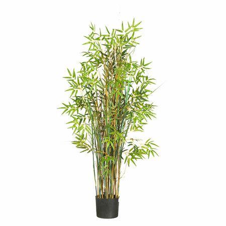 "Found it at Wayfair - 60"" Silk Bamboo Grass Plant"