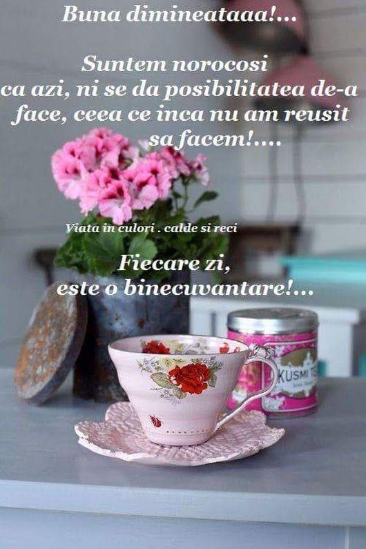 Buna dimineata dragii mei ! - Irina Pintilie - Google+