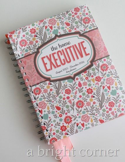 How I Stay Organized - The best Mom Planner!