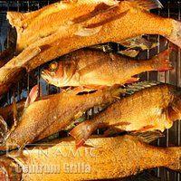 Wędzone ryby – tym razem szczupak