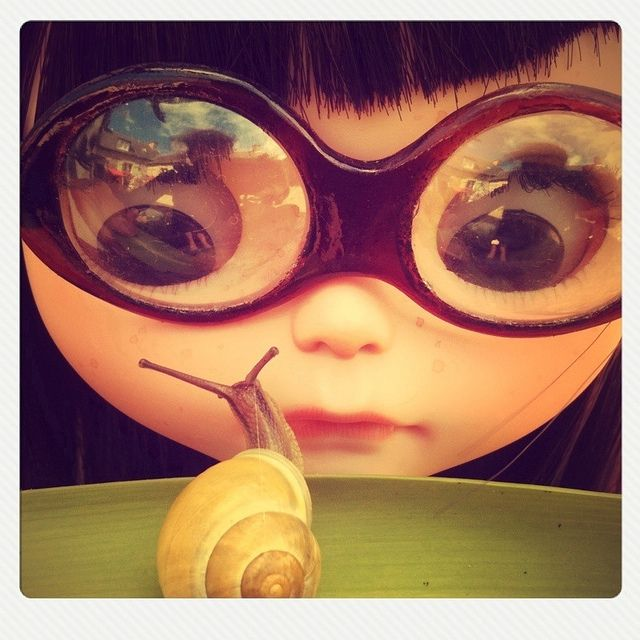 Peabody continues her exploration of the wild world by camembearBlythe Rules, 3D Character, Snails Cartoons, Blythe Dolls, Character 3D, 3D Cartoons, Girls Cartoons, Gardens Blythe, Cartoons Character
