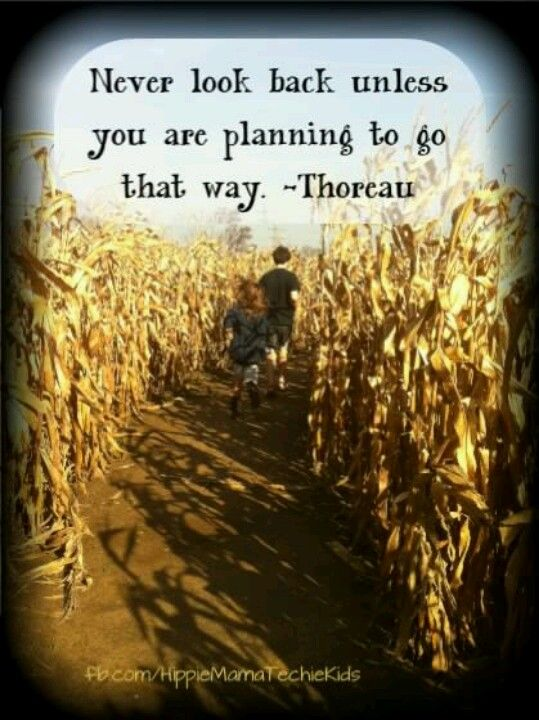 Quotes From Henry David Thoreau Self Reliance