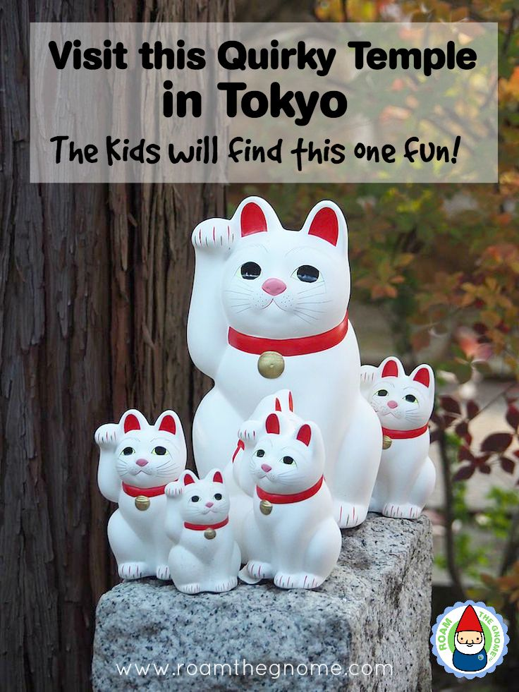 Planning to visit Temples in Tokyo - The Gotokuji Cat Temple is fun for kids. Details here. For more SUPER DOOPER FUN ideas for family-friendly weekend adventures and travel with kids, all over the world, visit our FAMILY TRAVEL DIRECTORY www.roamthegnome.com. Search by city. Rated by kids and our travelling Gnome.
