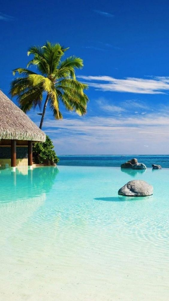 Exotic Vacation Locations You Wish You Could Win a Trip to Exotic, Tahiti, Oceania, Paradise, Tropical, Island, Beautiful,