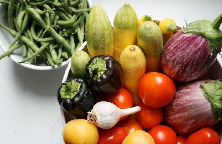 Aplicativo gratuito ensina a cultivar horta em casa - The Greenest Post
