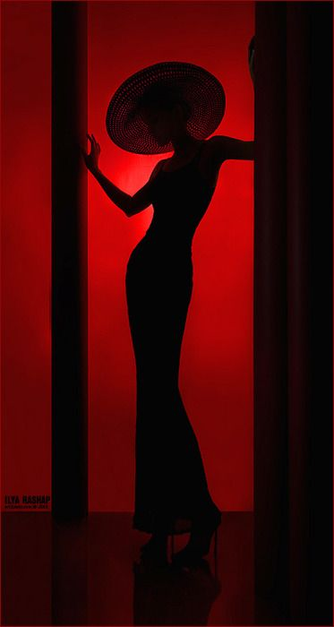 Deco silhouette - Photo by Ilya Rashap
