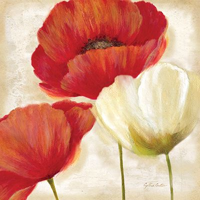 RB7001CC <br> Painted Poppies II <br> 12x12