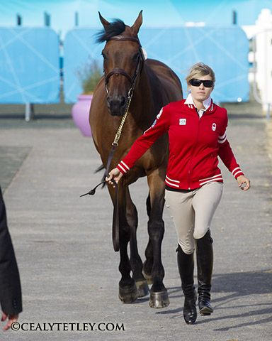 Canadian Olympic Team for Show Jumping Prepared to Compete