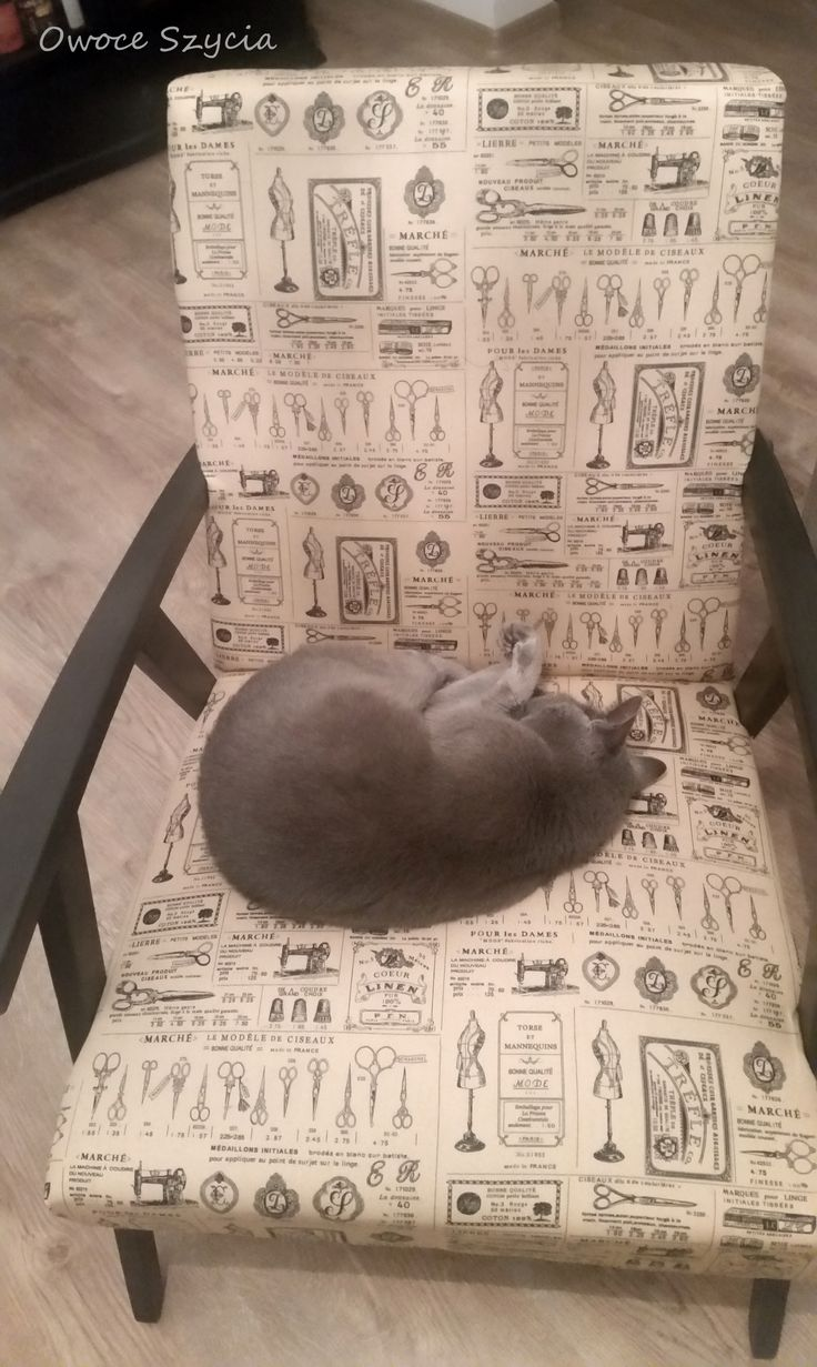#owoceszycia Armchair upholstered by me and quality control ;)