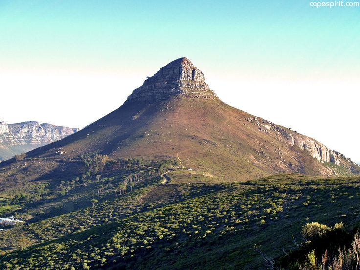 Lion's Head was given its name because when you look at it from the sea on the Clifton side, the top of the mountain looks like a perched Lion.
