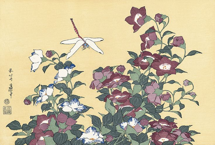 Hokusai/ Bellflower and Dragonfly, from an untitled Oban series of Flower and Bird