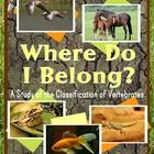 85 pages of activities and resources for teaching about the classification of vertebrates