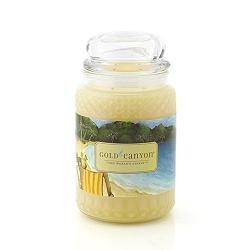 Gold Canyon candles-pineapple coast reminds me of Hawaii.