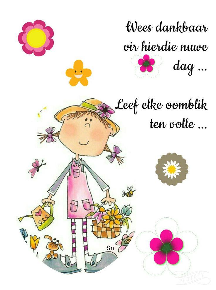 Wees dankbaar vir hierdie nuwe dag.  Leef ten volle.