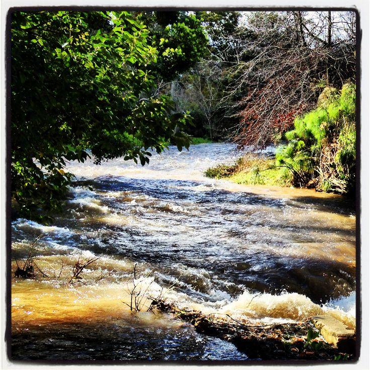 Lourens River - Somerset West