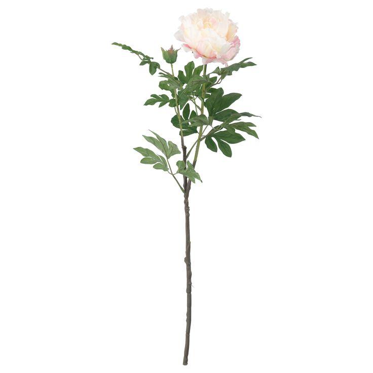 SMYCKA, Kunstblume, Pfingstrose, weiß Jetzt bestellen unter: https://moebel.ladendirekt.de/dekoration/dekopflanzen/kunstpflanzen/?uid=a4fab74f-be0d-56c0-968f-e45b750b38f4&utm_source=pinterest&utm_medium=pin&utm_campaign=boards #dekopflanzen #kunstpflanzen #dekoration