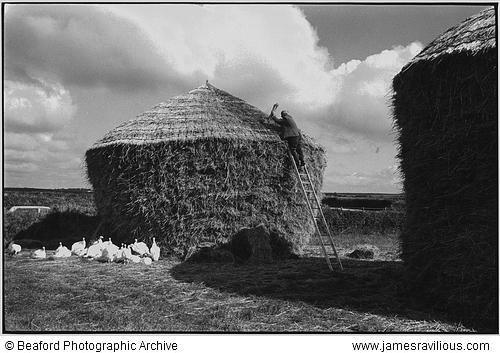 Bill Hammond thatching a rick, Westacott, Riddlecombe, Devon, England, 1986 - James Ravilious