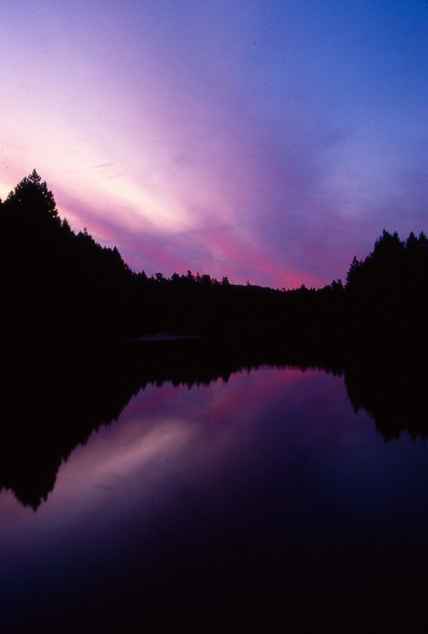 Purple dusk at Thetis Lake – Victoria B.C. Canada