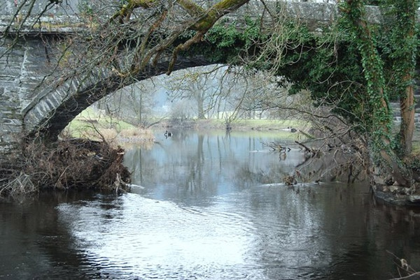 The River Dee running through Llandrillo Luxury holiday cottages in Llandrillo - www.rivercatcher.co.uk