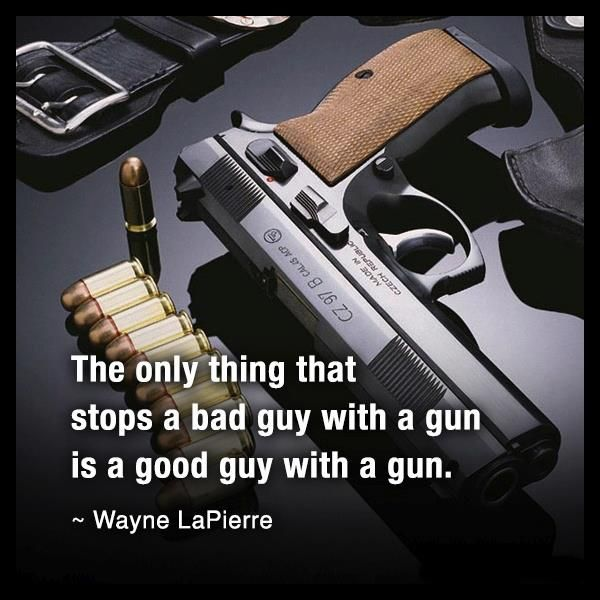 Wayne LaPierre is a US author and advocate of the right to keep and bear arms. He is best known for his position as the executive vice president of the National Rifle Association and for his criticism of gun control proponents.  Born: November 8, 1948 (age 64).