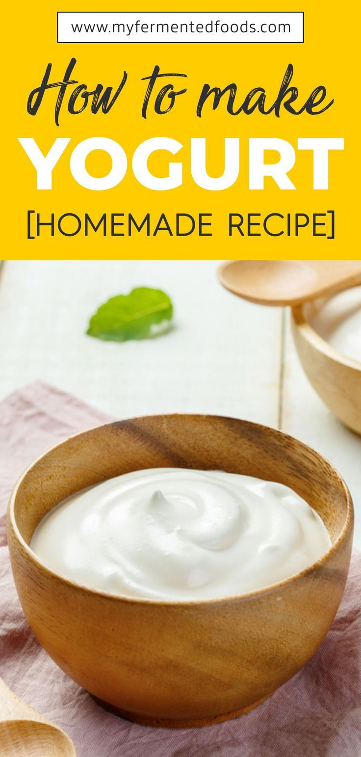 How To Make Yogurt Homemade Recipe Homemade Yogurt Recipes Yogurt Recipes Homemade Yoghurt Recipes