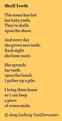 Seashells On the Beach | The Poem Farm: Shell Teeth - The Private Eye | growing poetry and ...